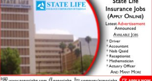 State Life Insurance Jobs